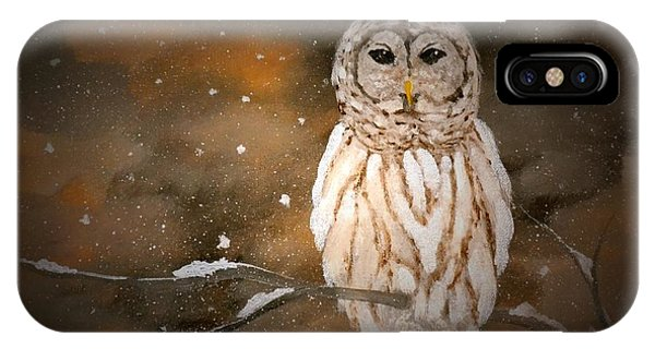 Snowy Night Owl IPhone Case