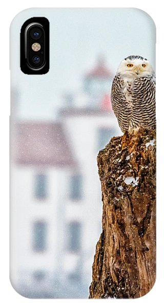 Snowy Owl At The Lighthouse IPhone Case