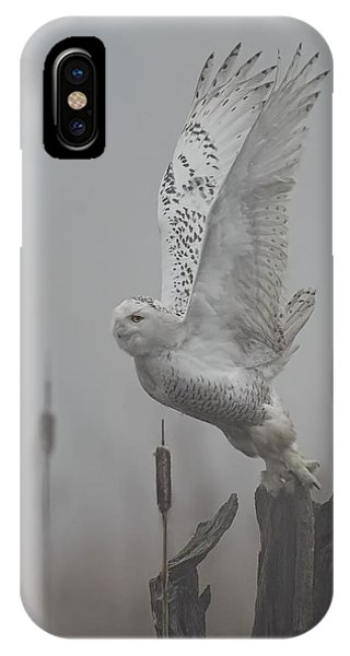 Snowy Owl Blastoff IPhone Case