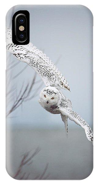 Winter iPhone Case - Snowy Owl In Flight by Carrie Ann Grippo-Pike