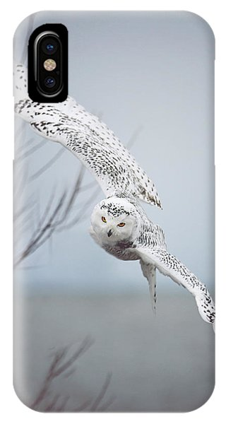 Snowy Owl In Flight IPhone Case