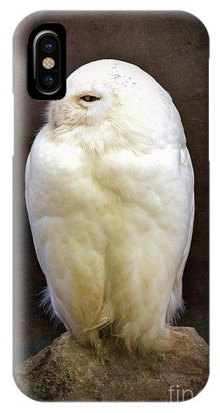 Mottled iPhone Case - Snowy Owl Vintage  by Jane Rix
