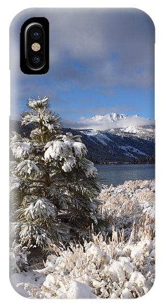 Snowy Pine  IPhone Case