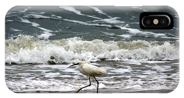 Snowy White Egret IPhone Case