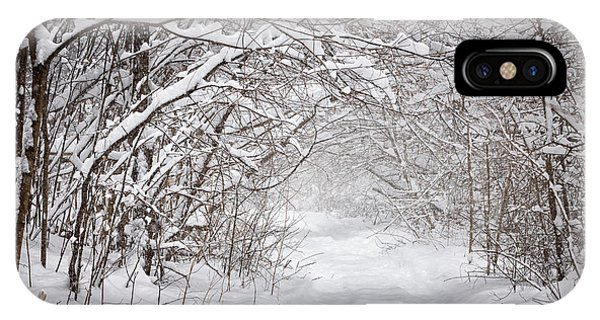 Hiking Path iPhone Case - Snowy Winter Path In Forest by Elena Elisseeva
