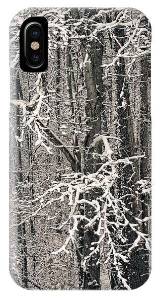 IPhone Case featuring the photograph Snowy Woods by Carol Whaley Addassi