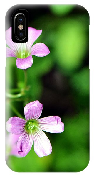 So Delicate In Purple. Texas Spring Perennial IPhone Case