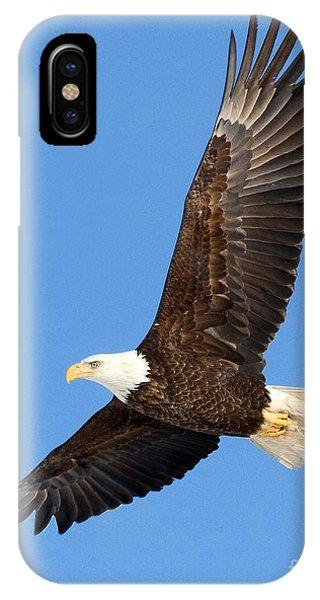 Soaring Eagle IPhone Case