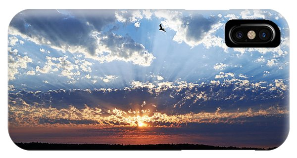 Soaring Sunset IPhone Case