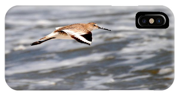 Soaring Willet IPhone Case
