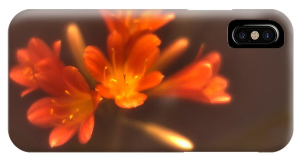 Soft Focus Kaffir Lily IPhone Case