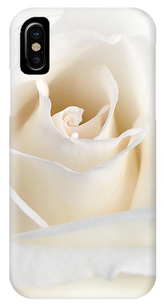 Soft Ivory Rose Flower IPhone Case
