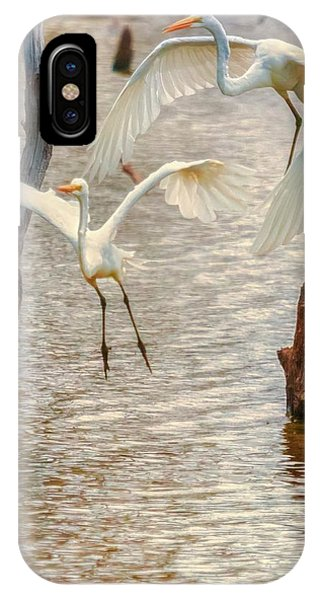 Soft Landing Two Egrets IPhone Case