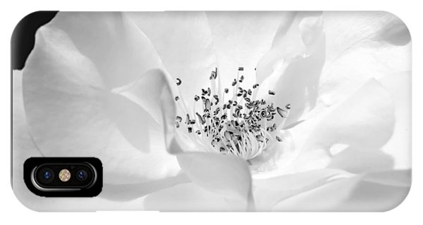 Soft Petal Rose In Black And White IPhone Case