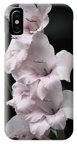 Soft Pink Gladiolas L IPhone Case