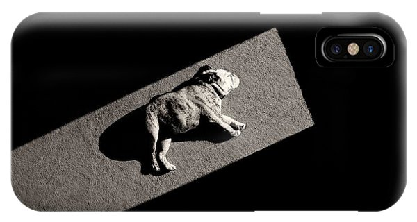 Cute Puppy iPhone Case - Solar Non-powered by Mike Melnotte