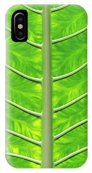 Solar Panel Leaf Veins IPhone Case