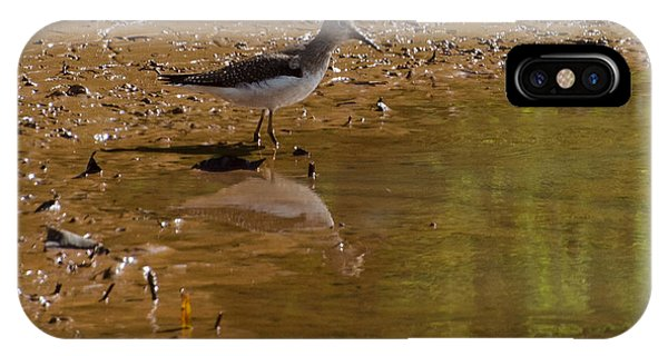 Lake Juliette iPhone Case - Solitary Sandpiper by Donna Brown