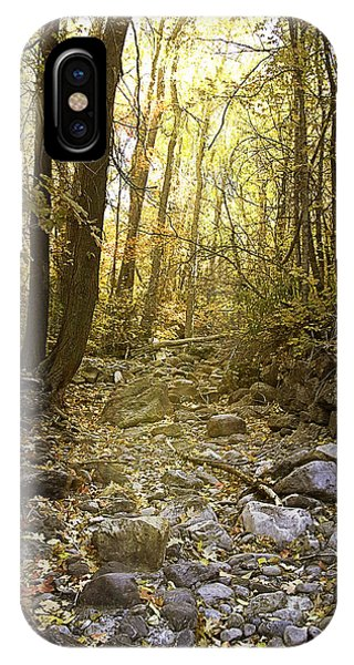 Solitude I IPhone Case