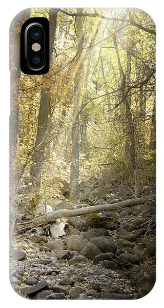 Solitude II IPhone Case