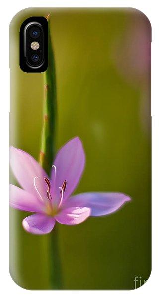 Solo Crocus IPhone Case