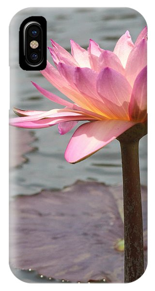Solo Waterlily IPhone Case