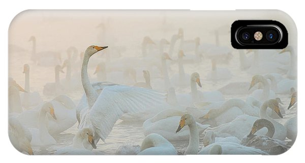 Swan iPhone Case - Song Of The Morning Light by Dmitry Dubikovskiy