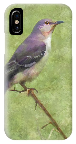 Songster IPhone Case