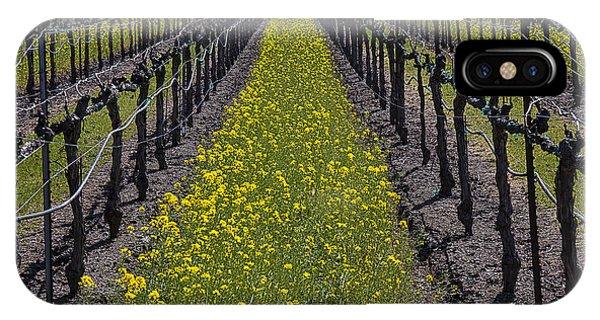 Mustard iPhone Case - Sonoma Mustard Grass by Garry Gay