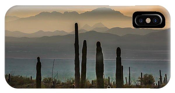 Sonoran Desert Sunset IPhone Case