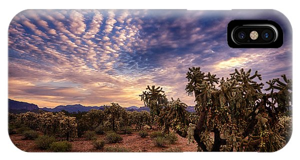 Teddy Bear Cholla iPhone Case - Sonoran Skies At Dawn  by Saija  Lehtonen