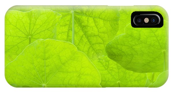 Spring Green II IPhone Case