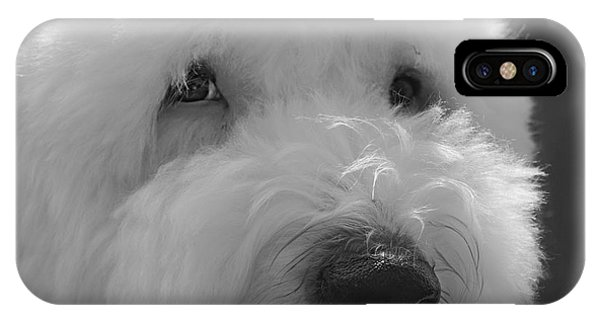 Soulful Eye's Old English Sheep Dog IPhone Case