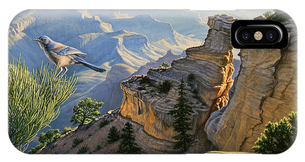 Grand Canyon iPhone Case - South Rim Morning by Paul Krapf