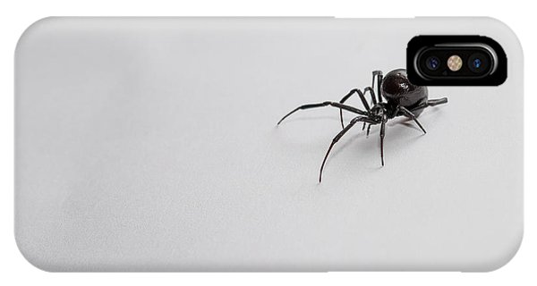 Southern Black Widow Spider IPhone Case