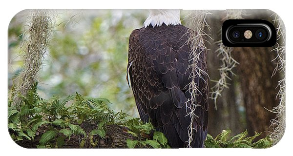 Southern Eagle IPhone Case