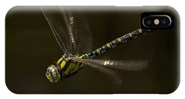 Southern Hawker Dragonfly In Flight IPhone Case