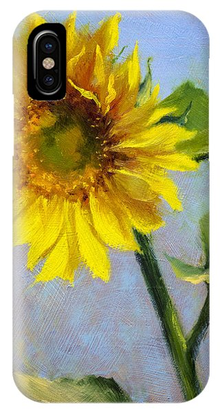 Southwest Sun Phone Case by Bill Inman