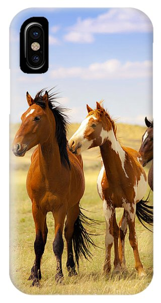 Southwest Wild Horses On Navajo Indian Reservation IPhone Case