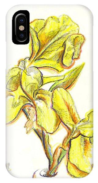 Spanish Irises IPhone Case