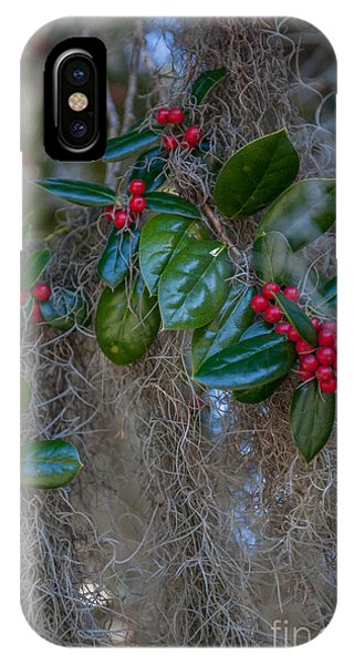 Grenn iPhone Case - Spanish Moss And Red Berries by Dale Powell