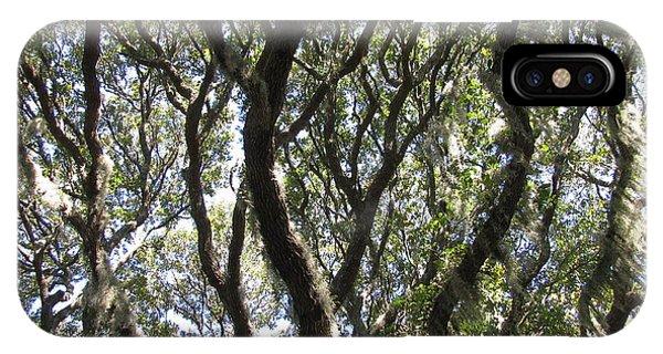 Spanish Moss Oak IPhone Case