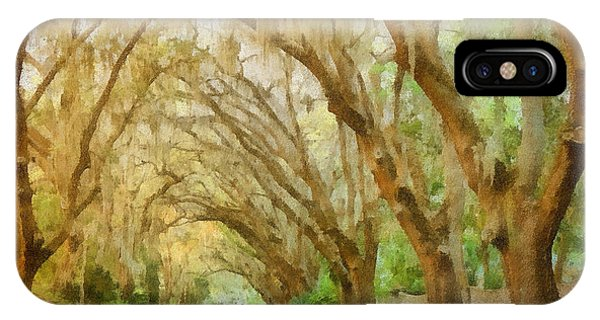 Spanish Moss - Symbol Of The South IPhone Case