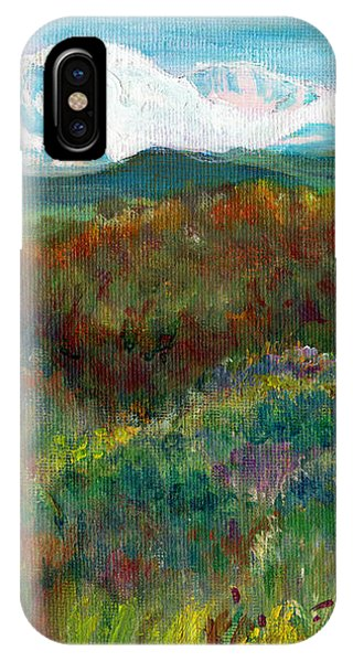Spanish Peaks Evening IPhone Case