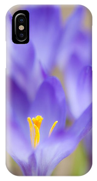 Spark Of Spring IPhone Case