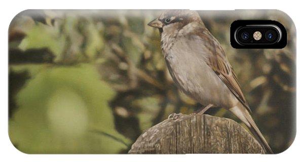 Sparrow On Fence Phone Case by Alberto Ponno