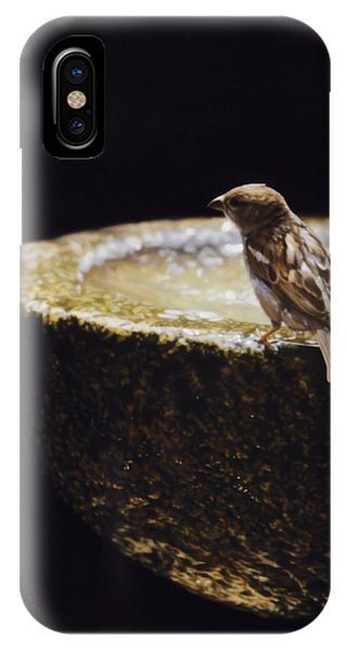 Sparrow With Fountain Phone Case by Alberto Ponno
