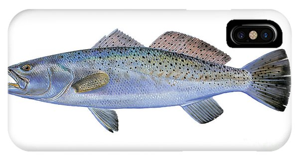 Reel iPhone Case - Speckled Trout by Carey Chen