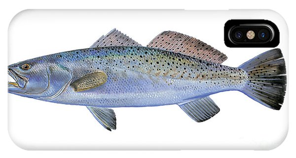 Trout iPhone Case - Speckled Trout by Carey Chen