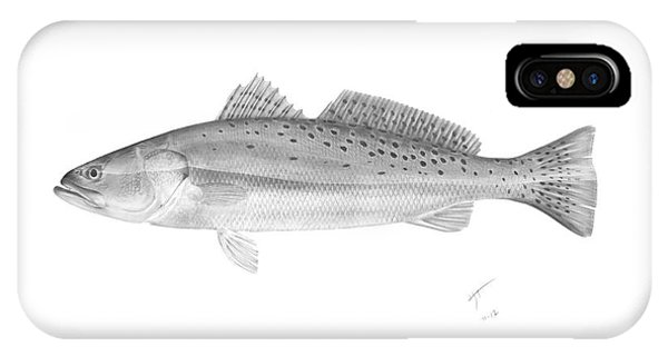 Speckled Trout - Scientific IPhone Case